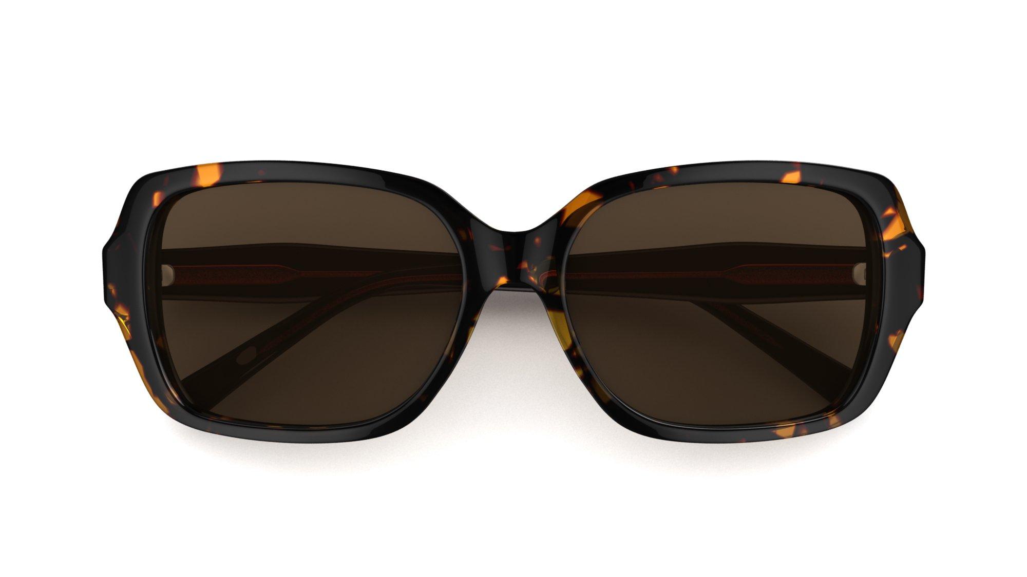 Solbriller havannabrunt Specsavers